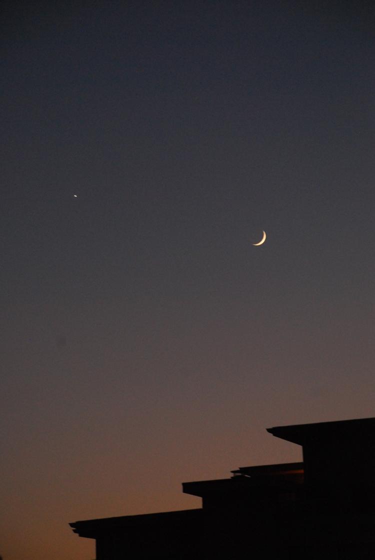 studio city moon